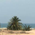 Photo-1 : 2 Lot de 465 m² viabilisé et constructible vue de mer à la lagune Tazdaine Midoun Djerba
