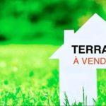 Terrains à vendre – Tilel – Chott Meriem – Tunisie