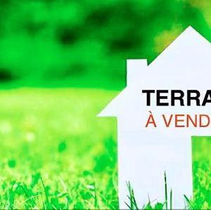 Terrains – Tilel – Chott Meriem – Tunisie