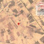 Photo-1 : Terrain Agricole à Mezzouna