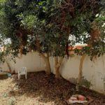 Photo-6 : Villa S+5 à Midoun