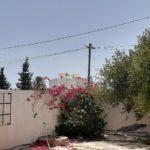 Photo-24 : Villa S+5 à Midoun