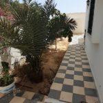 Photo-38 : Villa S+5 à Midoun