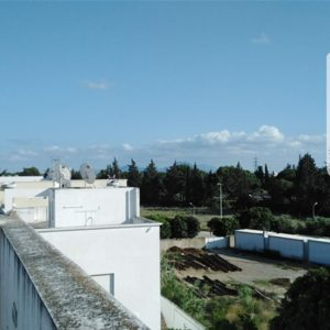 Duplex Lavande