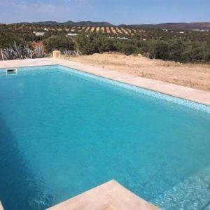 Maison de campagne avec piscine à Hammamet