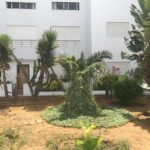 Photo-20 : Bel appartement S+3 au Jardin de Carthage