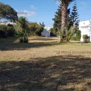 Villa S+3 de 4000 m² à la Soukra