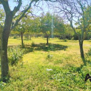 Terrain de 2271 m² près de la route principale Nabeul Tunis, Nabeul.