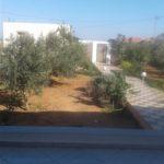 Photo-2 : Villa S+2 avec une vaste jardin à 1km du plage à Kélibia / Dar allouche