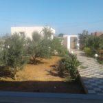 Photo-19 : Villa S+2 avec une vaste jardin à 1km du plage à Kélibia / Dar allouche