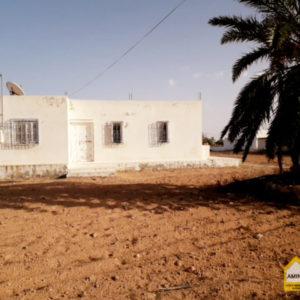 Villa sur un grand Terrain à Beni Maaguel Djerba