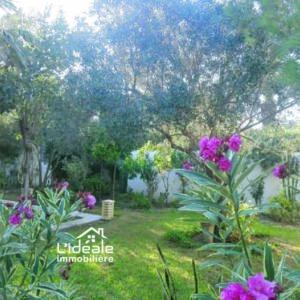 Villa Monica à Hammamet Nord