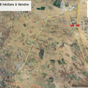 Terrain Agricole de 4,8 ha à Enfidha