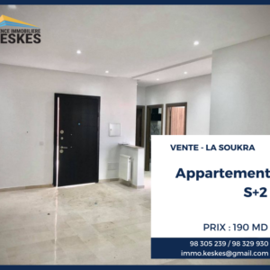 APPARTEMENTS S+2
