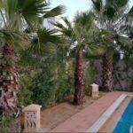 Photo-13 : Maison récente avec piscine chauffé à caractère unique
