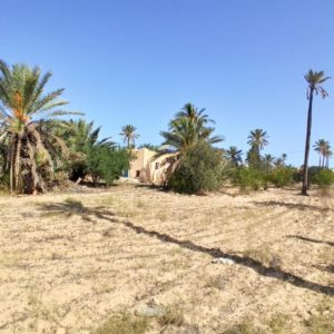 Ancienne demeure avec fermes et puit d'eau titre bleu à Midoun Djerba