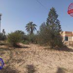 Photo-1 : Ancienne demeure avec fermes et puit d'eau titre bleu à Midoun Djerba