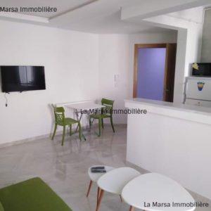 Appartement S+1 meublé à Cité El Wahat
