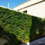 Photo-16 : Rez-de-jardin de maison à 30 mètres de plage Chatt Meriem