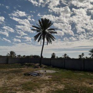 Terrain titré+ permis de construire à Tezdaine Djerba
