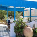 Photo-10 : Palmiers villa de vacances avec piscine vue mer à djerba