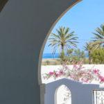 Photo-13 : Palmiers villa de vacances avec piscine vue mer à djerba