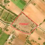 Photo-1 : Terrain agricole de 7789m² à Somâa, Nabeul