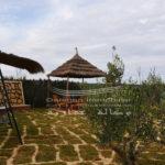 Photo-2 : Maison de compagne à Sousse