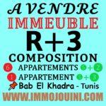 Photo-1 : Immeuble R+3 à Bab Khadra