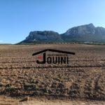 Photo-1 : Terrain 15 Hectares à Mornag