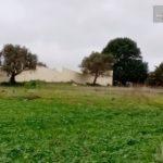 Photo-3 : ارض للبيع فى طريق بنى مسلم