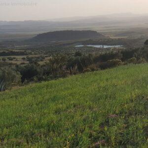 Lots de terrain à Zaghouan