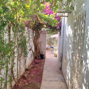 RDC S3 meublé avec jardin à La Marsa