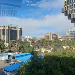 Appartement S+2 à Tunis Centre ville