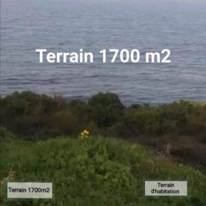 Terrains à Gammarth