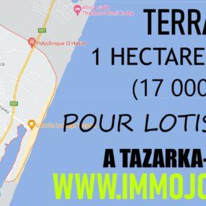 Terrain 17000 m² à Tazarka