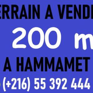 Terrain 1200 m² à Hammamet