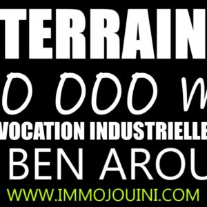 Terrain 20 000 m² à Ben Arous