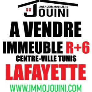 Immeuble R+6 A Lafayette Centre ville Tunis