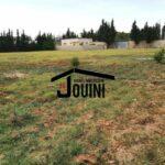 Photo-2 : Terrain 6674 m² à Mornag Route Boumhal