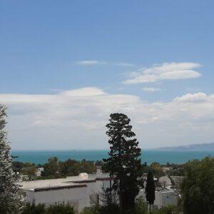 Luxueuse villa S3 meublée avec piscine à Carthage