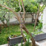 Photo-1 : Villa APHRODITE