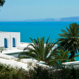 Terrain de 8517 m² vue mer à Sidi Bou Saïd