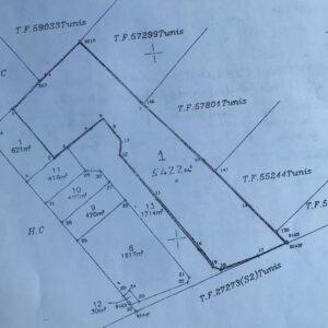 Terrain de 5422 m² à La Soukra