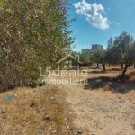 Photo-1 : Terrain Katia à Hammamet Nord