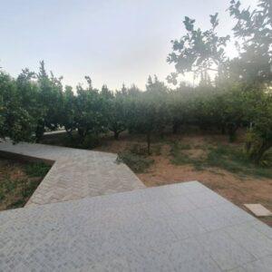 Villa GUSTO 1