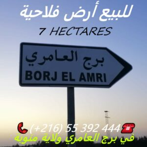 Terrain Agricole 7 Hectares A Borj Amri