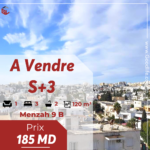 Appartement S+3 à Menzah 9